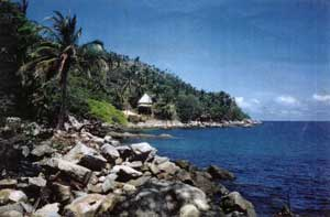 rocky beach near village